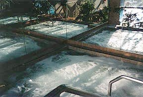 Four Seasons hot tub